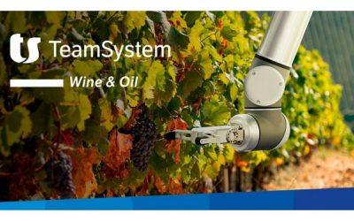 TeamSystem Wine & Oil (webcast)